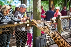 Brevard Zoo_03-07-2020_019
